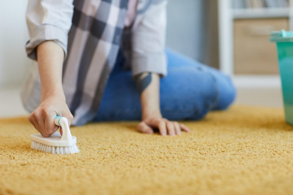 Why hire a carpet cleaner?